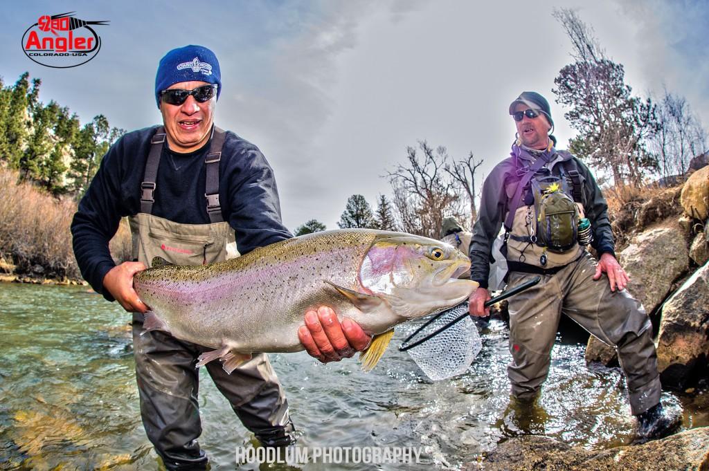 Huge Colorado Trout 5280 Angler.1